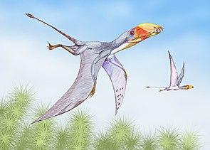 Lebensbild von Dimorphodon macronyx