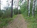 Dobryanskiy r-n, Permskiy kray, Russia - panoramio (285).jpg