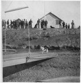 Dog on platform, men on bluff. - NARA - 297201.tif