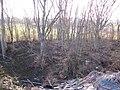 Doline est de Marchais-Beton, ouest de la D119.jpg
