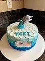 Dolphin cake.jpg