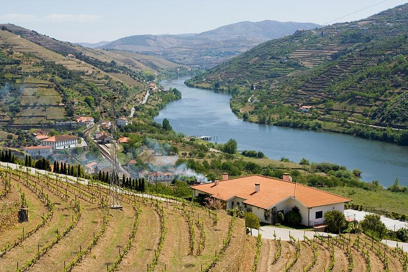 800px-Douro_valley_28391326532629