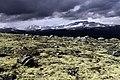 Dovrefjell park - panoramio.jpg