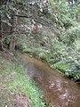 Downstream Black Linn Burn - geograph.org.uk - 981717.jpg
