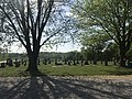 Dripping Springs Cemetery on May 11th 2018.jpg