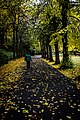 Dublin - Saint Stephen's Green - 20151026143042.jpg