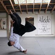 Dunken Francis Mullett Aikido.jpg