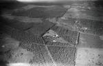 ETH-BIB-Eukalyptus- und Kaffeeplantage aus 1000 m Höhe-Kilimanjaroflug 1929-30-LBS MH02-07-0102.tif