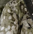 Eichenlaubmuster (detail of uniform).jpg