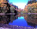 Ellis Cove, Priest Point Park, Olympia WA Fall 2007 - panoramio.jpg
