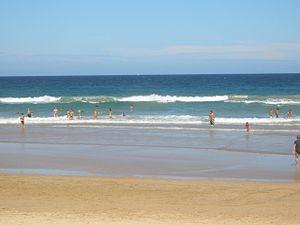 Elouera Beach - Image: Elouera Beach 4