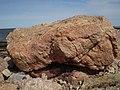 Enorme piedra ( costa de Punta Gorda ) Montevideo - panoramio.jpg