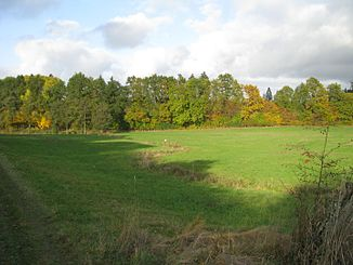 The Erpe south of Oelshausen