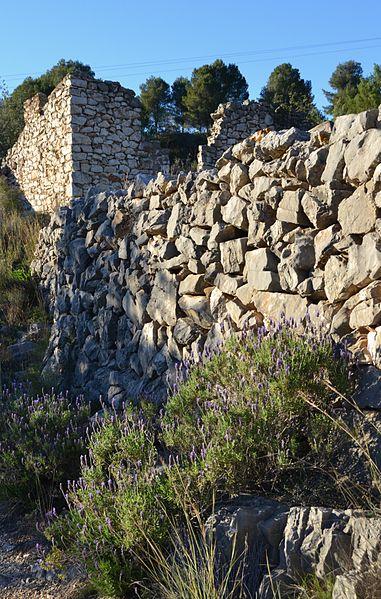 File:Espígol i mur de pedra, terme de Dénia.JPG