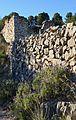 Espígol i mur de pedra, terme de Dénia.JPG