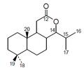 Estructura de la nagilactona.png