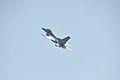 F-16 - panoramio (2).jpg