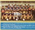 FC Petrolul Ploiești 1988-89.png