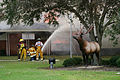 FEMA - 16611 - Photograph by Bob McMillan taken on 10-02-2005 in Texas.jpg