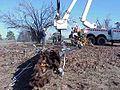FEMA - 524 - Photograph by John Shea taken on 12-29-2000 in Arkansas.jpg