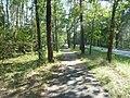 Fahrradweg an der Waller Str - geo.hlipp.de - 13118.jpg