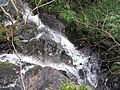 Fairlie Burn - geograph.org.uk - 372040.jpg