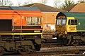 Fairwater - Freightliner 66503 and 66557.JPG