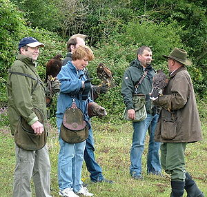 Lesson - Falconry lesson