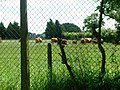 Farm in Fulmer - geograph.org.uk - 912191.jpg
