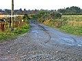 Farm track leading to Newton of Drum Farm - geograph.org.uk - 628055.jpg