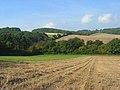 Farmland and woodland, Piddington - geograph.org.uk - 994363.jpg