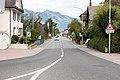 Feldkircher Strasse, Schaan (1Y7A2272).jpg