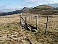 Fencing at the 518m top of Gale Fell - geograph.org.uk - 1208639.jpg