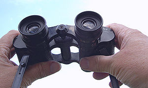 Central focusing binoculars with adjustable in...