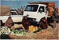 Fiat Iveco Truck & Peugeot 404 light lorry, Tunisia, 1984 (17080781659).jpg