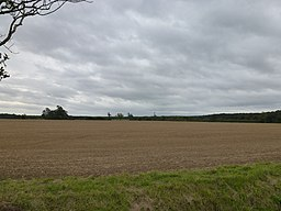 Large modern field, bare-soiled under a heavily clouded sky. It is September of a dry year, and the harvest has been in for over a month and the land prepared for next year. It looks bare and harrowed to a very smooth surface. Distant woodland frames the field.