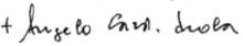 Firma del cardinale Scola