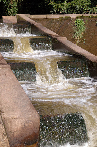 Fish ladder - A small fish ladder on the River Otter, Devon