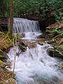 Flickr - Nicholas T - Kyler Fork Falls.jpg