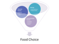 Food Choice Factors schematic.tif