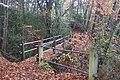 Footbridge in Gravel Pit Wood - geograph.org.uk - 1592272.jpg