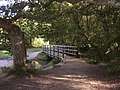 Footbridge north of Furzey Lodge, New Forest - geograph.org.uk - 44690.jpg