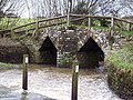 Footbridge over the River Divelish - geograph.org.uk - 336344.jpg
