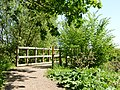 Footbridge toward western Bellmoor Lake - panoramio.jpg