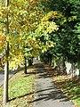 Footpath, Withdean Avenue - geograph.org.uk - 1556701.jpg