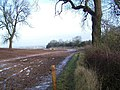 Footpath Near Tutbury - geograph.org.uk - 1614008.jpg
