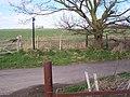 Footpath crosses Ludgate Road - geograph.org.uk - 1221623.jpg