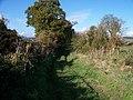 Footpath on Margett's Hill - geograph.org.uk - 1556785.jpg