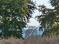 Forest at Appolonia Volvi.jpg