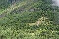 Forest in Yatsugatake 08.jpg